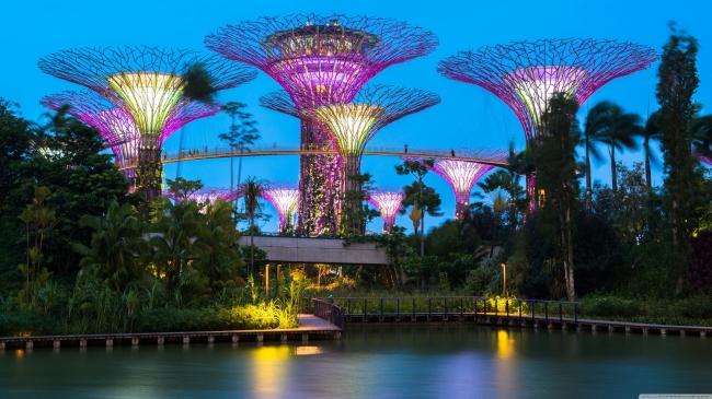 Asia - Singapur - Hasta Marzo | Paquetes 2020 & 2021