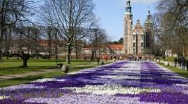 Escandinavia - Dos Capitales y Fiordos | Paquetes 2020