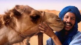 Marruecos - Hasta Octubre