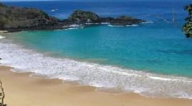 Brasil - Praia do Forte - Agosto a Diciembre