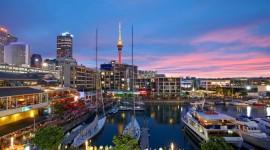 Japon y Auckland - 13 Noviembre